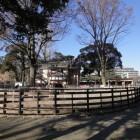 Ponyparkcity en attractiepark Slagharen