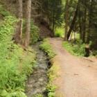 Zwitserland: wandelen langs suonen/bisses in Oberwallis