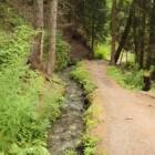 Zwitserland: wandelen langs suonen/bisses in Mittelwallis