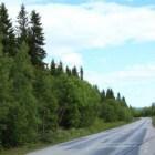 Vildmarksvägen: een wildernisroute in Zweden