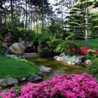 De mooiste open tuinen van Nederland