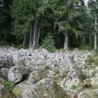 Vogezen: geheimzinnige stenen in Barbey-Seroux