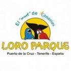 Loro Parque op Tenerife: Orca Ocean, Planet Penguin & meer!