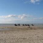 Garnaalvissers te paard in Oostduinkerke (B)