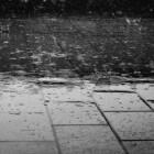 Slecht weer in Zeeuws-Vlaanderen: wat is er te doen?