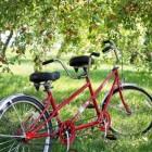 Verschillende fietsroutes om te fietsen op de Veluwe