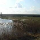 Wandelen en fietsen in authentiek Zeeuws polderlandschap