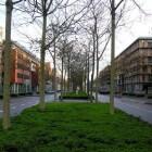 Maastricht: wandelen langs cultuur en historie
