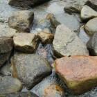 Gerolstein in de vulkaaneifel heeft natuur en bronwater