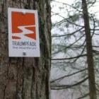 Vulkaaneifel: Traumpfad Ritterschlag in Monreal