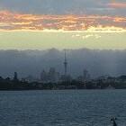 Auckland is een wereldstad en gelegen aan een mooie haven