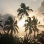 Zanzibar; informatie over de eilanden
