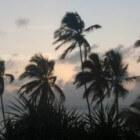 Op reis naar Zanzibar