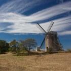Gotlands fauna, diersoorten op een bijzonder stukje wereld
