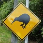 Nieuw-Zeeland: Reistips voor het Noordereiland