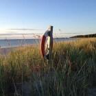 Öland, een zonnig vakantie-eiland in Zweden