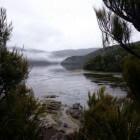 De Rakiura Track op Stewart Island, Nieuw-Zeeland