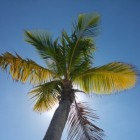 Grace Bay, Turks- en Caicoseilanden: geweldige stranden
