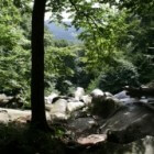 Duitsland: puur natuur in Odenwald, de Felsberg