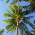 De 10 beste hotspots van Gran Canaria