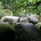 Bretagne: Gorges du Korong