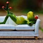 Couchsurfing: gratis overnachten in meer dan 200 landen
