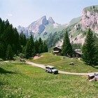 15 redenen voor een gezinszomervakantie in Zwitserland