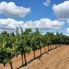 La Rioja, de kleinste regio van het Spaanse vasteland