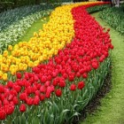 Tuinbeurzen, tuinfairs en tuinmarkten in Nederland en België