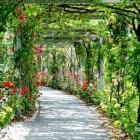 Speciale planten dagen bij kwekerijen, parken en open tuinen