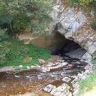 Ardennen: een herborist-holbewoner op lentetrektocht