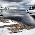 Antarctica, Neko Harbour is pas echt Antarctica