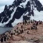 Antarctica, Petermann Island