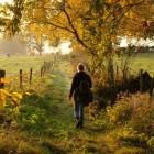 Vielsalm: een mooie stad in de Belgische Ardennen
