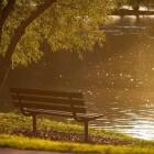 10 parken in Amsterdam