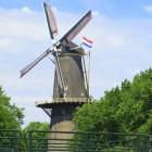 Schiedam: Een geschiedenis van Jeneverneuzen en Molens