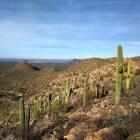 Tucson: 10 mooie plekjes en bezienswaardigheden