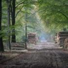 Beekbergen: een bijzondere gastvrije beleving