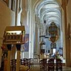 Langs de Saône: de Bourgondische stad Tournus