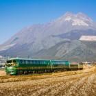Treinreizen: zie de wereld anders vanuit de trein