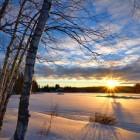 Wintersport in Alberta, Canada: skiresorts van wereldklasse