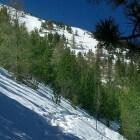Sneeuw en wintersport op de Mont Ventoux