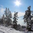 Sneeuwzeker wintersporten in Obertauern