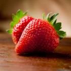 Het Aardbeienland: thema en speelpark met aardbeien pluktuin