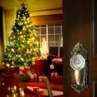 Kerstvakantie en nieuwjaarsduik op Ameland