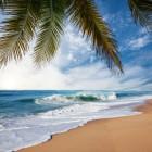 Op Vakantie naar Aruba