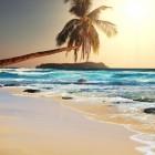 De luie vakantie…
