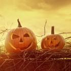 Halloween vakantie in Engeland