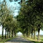 Actief dagje uit in Limburg