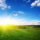 Zomeractiviteiten: Wat te doen in de zomer?